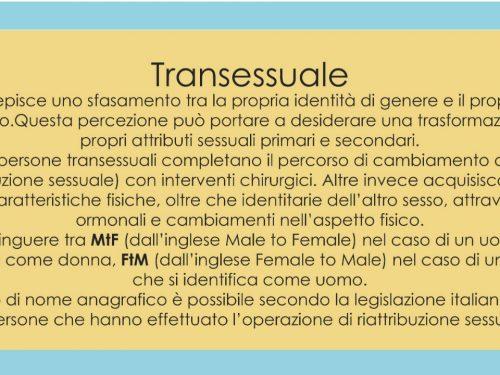 Dove le donne trans non ci sono: la loro lenta inclusione nel porno femminista e queer